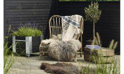 tuinblog herfst winter