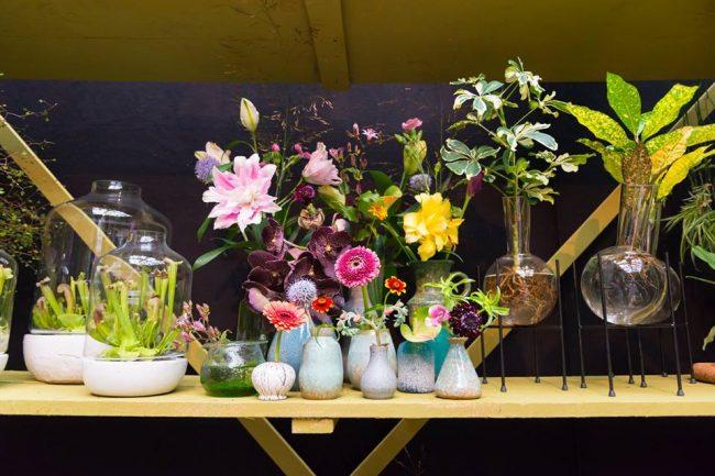 maisonbelle-bloemen-planten-interieur