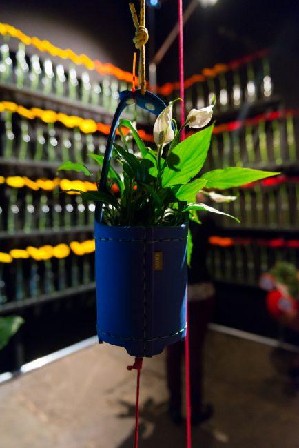 maisonbelle-plantentrend