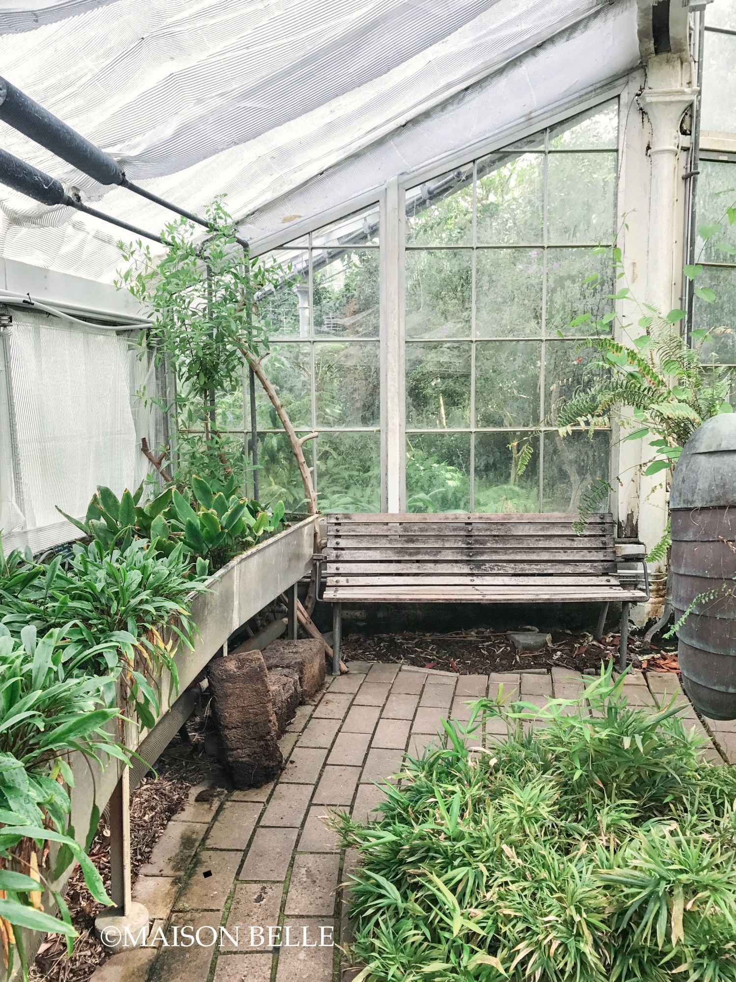 kopenhagen boanische tuinen