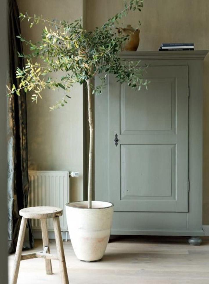 Groen In Huis 5 Tips Maison Belle Interieuradvies