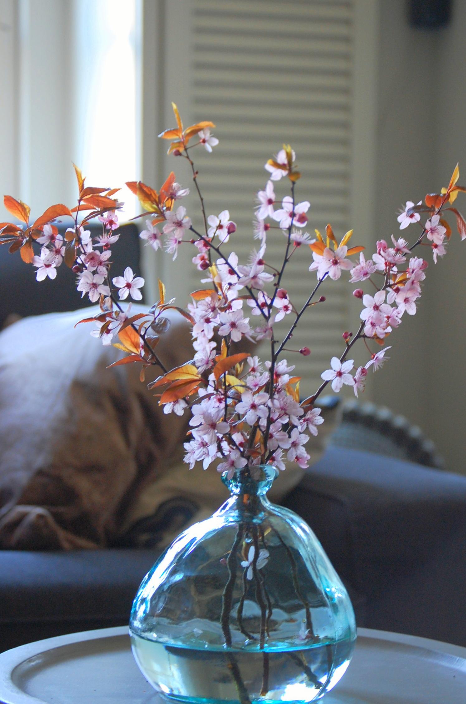 bloesem winter interieur